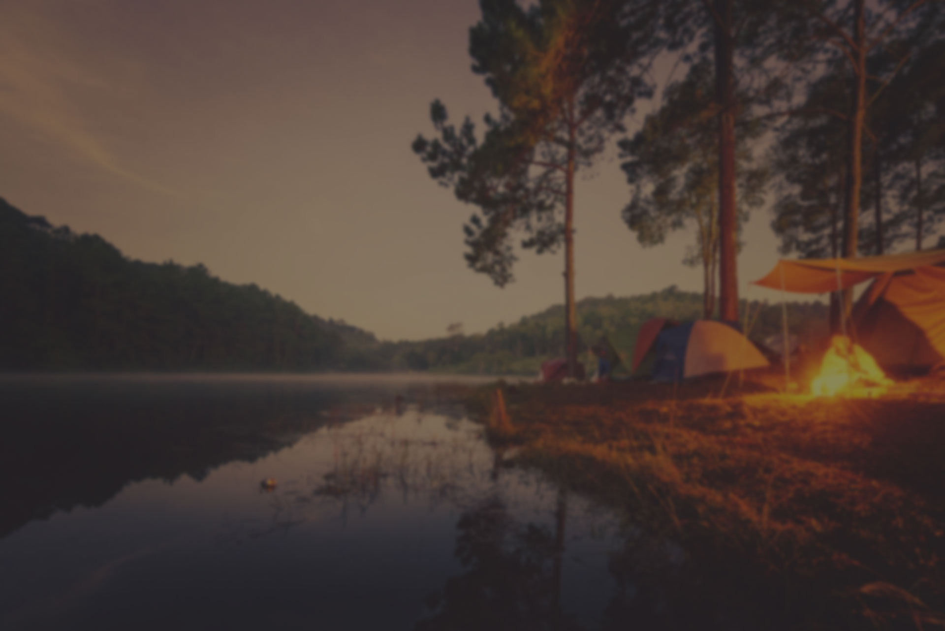 Blured image of camping and tent with high iso grained picture under the pine forest in sunset at Pang-ung
