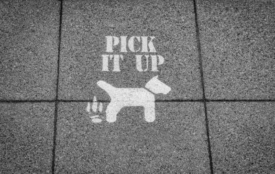 Pick It Up Sign Set in a Pavement for Dog Walkers