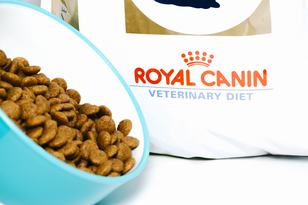 Royal Canin is healthy and premium kibbles for pets isolated on white Background